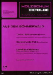 Holzschuh-Erfolge Band 17